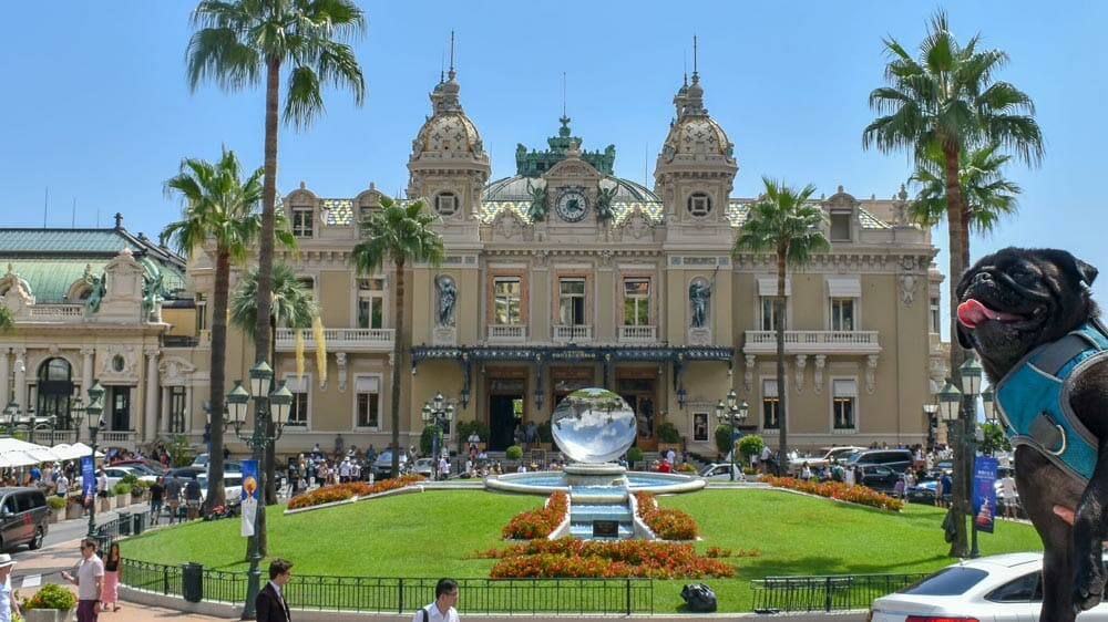 Pebbles the pug in front of Casino de Monte Carlo